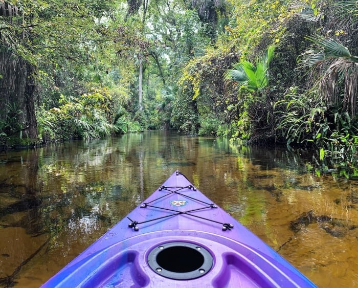 Picture of the Aruba 10 tracking on a river